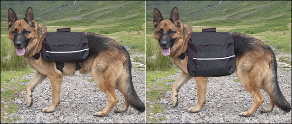 The two different sizes of panniers (left: 'Standard', right: 'Maxi') available with the Large and Giant Bak-Paks.