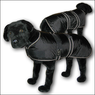 The Animate 'Jet' coat.