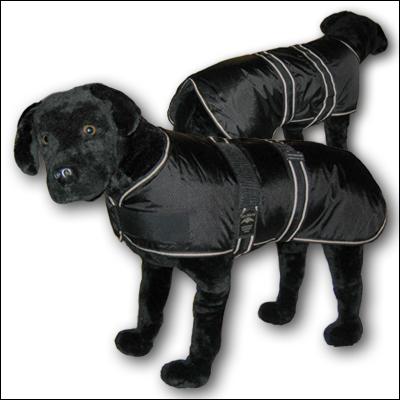 The Animate 'Jet' coat.