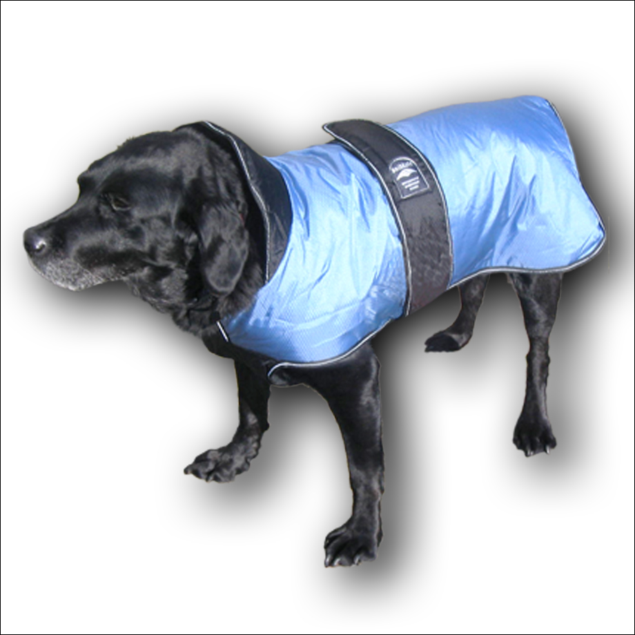 Animate Padded Coats With Under-body Panel
