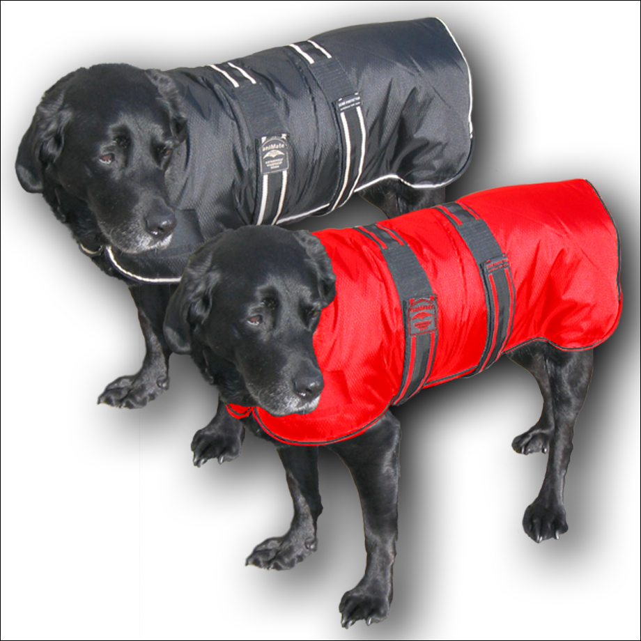 The Animate range of padded coats