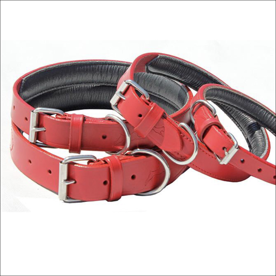 Lined And Padded Leather Collars